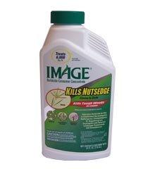 Image L&G 3.3% Herbicide 24 Oz